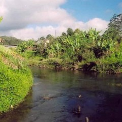 Мадагаскар — остров табу. Часть 2