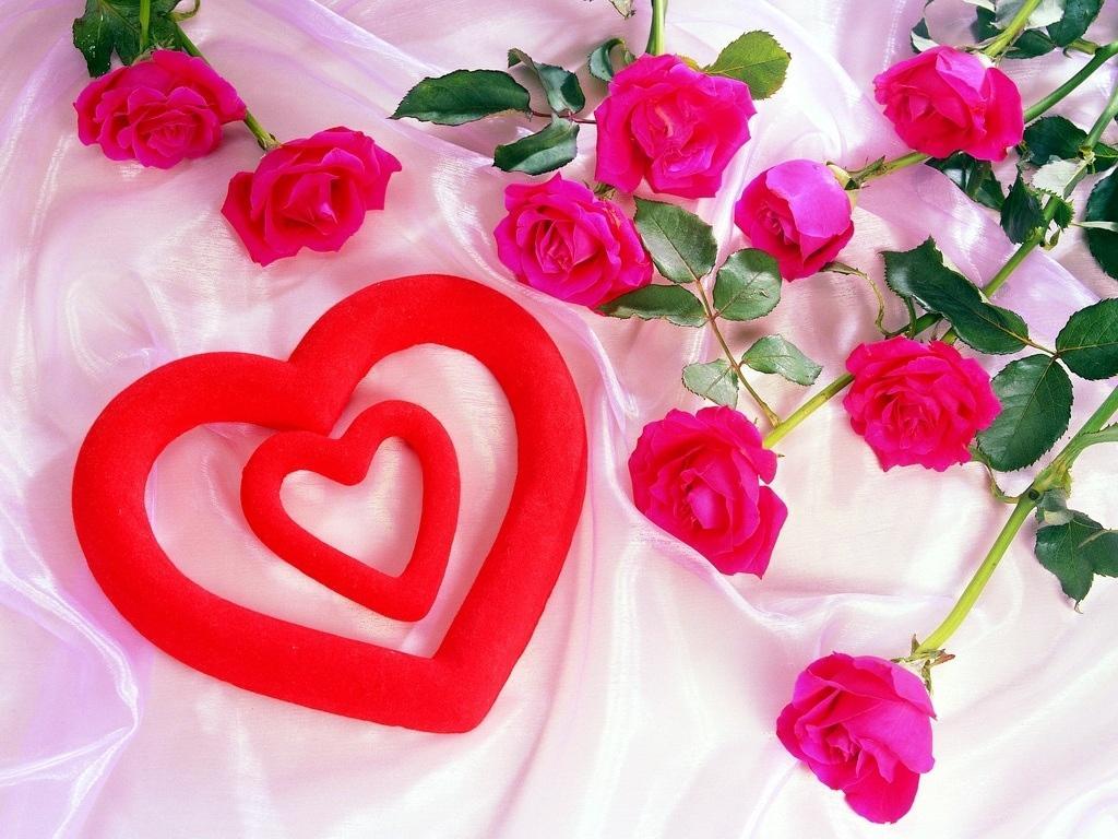 Картинки про любовь топ 50 розы и