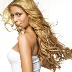Характеристика и химический состав волос