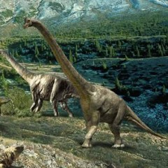 Динозавров погубили водоросли?