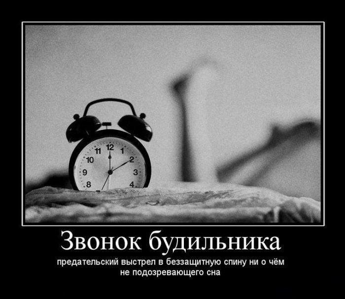 Звонок будильника — предательский выстрел в беззащитную спину ни о чём не подозревающего сна