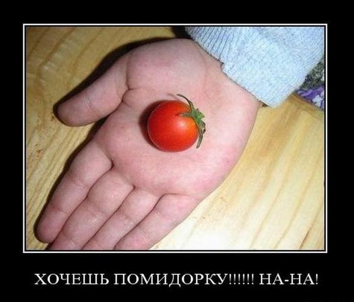 Хочешь помидорку? На, на!