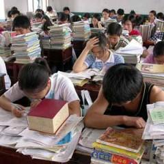 Влияние правительства на образование XIX века